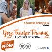 200 hour Yoga Teacher Training 9 weekends image