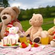 2.00pm Teddy Bear's Picnic including a special guest appearance by Bentley the Bear! image