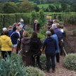 Holbrook Gardens visit image