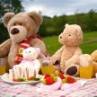 12.30pm Teddy Bear's Picnic -  featuring special guest appearance from Bentley the Bear! image