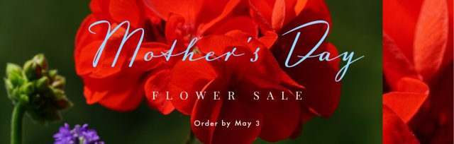 Buffalo Naval Park Mother's Day Geranium Sale