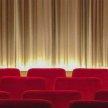 Film Screening Nights image