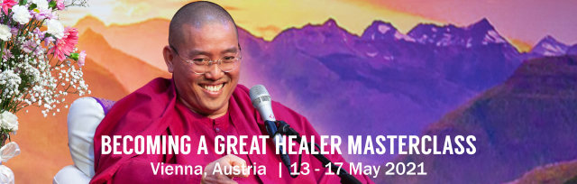 5-Day Becoming a Great Healer Masterclass with Sri Avinash - Vienna, Austria