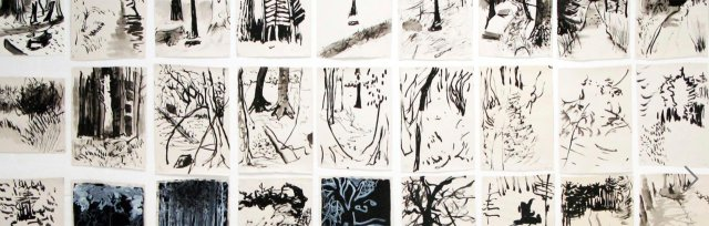 Drawing with Nature with Karen Howse