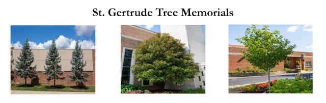 St. Gertrude Tree Memorials