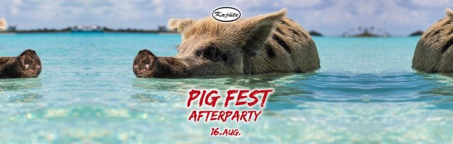PIG Fest AfterParty
