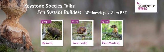 Keystone Species Series - Ecosystem Builders
