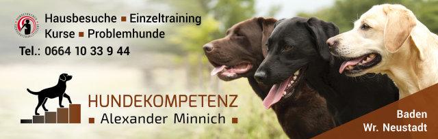Wiener Sachkundenachweis Zoom Webinar Hundekompetenz Minnich