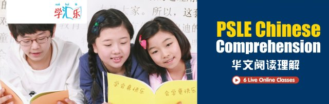 PSLE Chinese Comprehension (6 Live Online Classes)