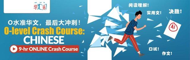O-Level Chinese 9-Hr Crash Course  - O 水准华文,最后冲刺