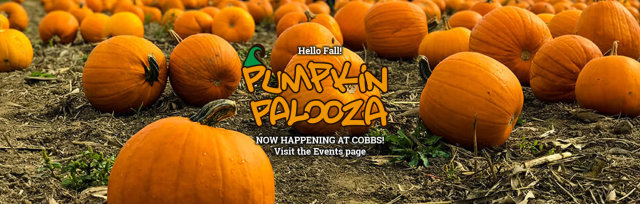 PUMPKIN PALOOZA incl. GENERAL ADMISSION - Saturday, Oct 31, 2020 (11am - 5pm)