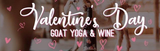 Valentine's Day Goat Yoga
