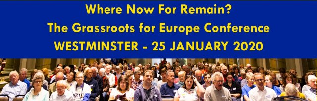 Where Now for Remain? The Grassroots for Europe Conference 2020