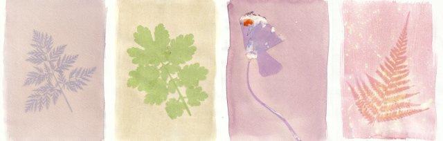 Plant Prints: Cemetery Park Online