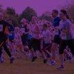 Lindfield Village Run image