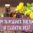 I am Ascending with Essential Oils! Channeled Meditation and Short Lesson-Class #6 image