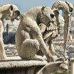 20:30 Notre Dame de Paris aka The Hunchback of Notre Dame @ST PATRICK'S CATHOLIC CHURCH image