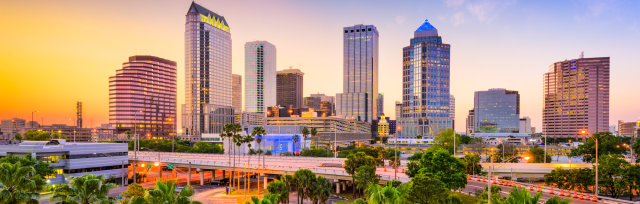 In-Person Mapping Course in Tampa, FL (Hydrographic and Aerial based training options)