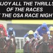 OSA Race Night March 30th 2019 image