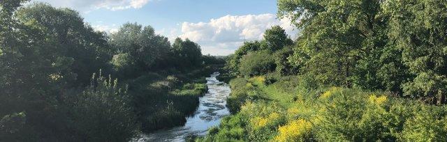 Roding Valley Summer Walk