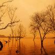 RiverForum: Rivers on Fire & Flood image