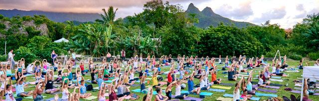 Live Music Farm Yoga Experience