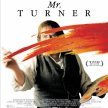 Tuesday Cinema - Mr Turner (2014) - by Mike Leigh - UK - IMDB 6.8 - HD Copy image