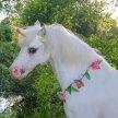 Unicorns and Princesses image