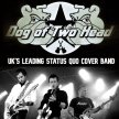 Dog of Two Head (Status Quo) | Tribute Band image
