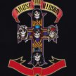 Guns'n'Roses Tribute - Abuse Your Illusions image