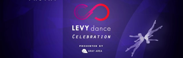 LEVYdance 17th Annual Celebration with Photay
