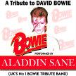 Aladdin Sane (David Bowie Tribute Band) image