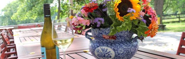 Design with Wine