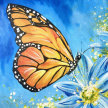 Papillon Brush Party - Online image