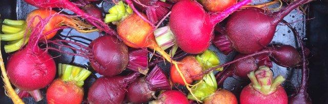 Twilight Gardening @ The Edible Flower