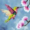 artbird party ONLINE |Kolibri image