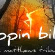 Trippin Billies (The Dave Matthews Tribute Band) image