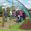 Beginners/refresher Gardening Course with Klaus Laitenberger (Two Day) image