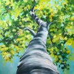 Under the Birch Tree Brush Party - Online image