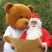 Santa's Winter Woodland image
