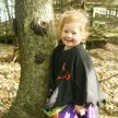 SOLD OUT - Halloween Forest Play School Special image