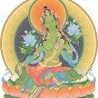 Tara Prayers - LIVE STREAMED image