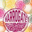 Harrogate Gin Festival 2018 image