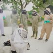Bee Keeping Course with Liam McGarry (Two Day) image