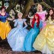 Fairytale Princess Ball image