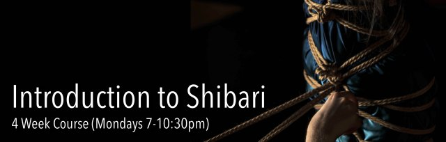 Introduction to Shibari (4 week course)