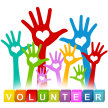 VOLUNTEER WEEKEND with SkyWatch for community volunteers only image