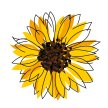 Sunflower Soirée: Neil Young - Exploring Gender & Sexual Identities image