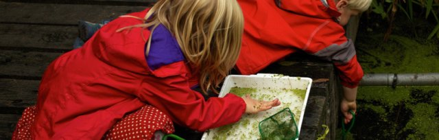 Pond Dipping 2pm