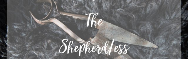 Meet The Shepherd/ess